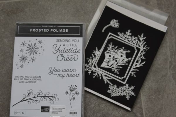 Frosted Foliage stamp & Frosted Frames dies
